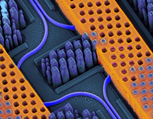 ibm-silicon-nanophotonic-chip-copper-and-waveguides