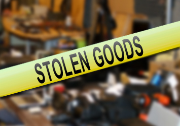 revengers_stolen-goods