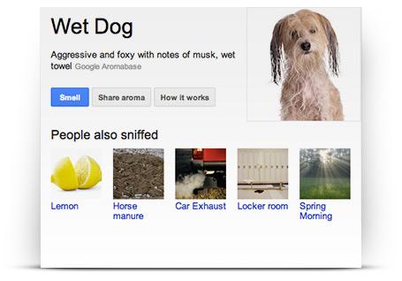 google_nose1