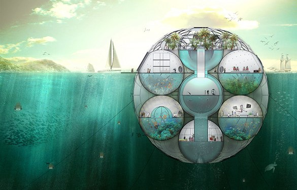 bloom_underwater