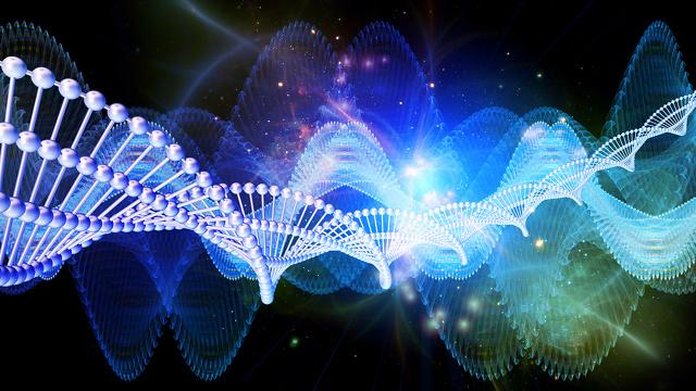 genetic_circuit