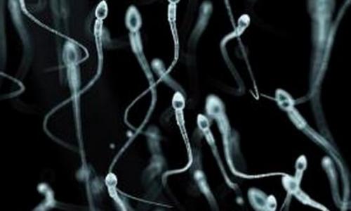 Cyborg_Sperm3
