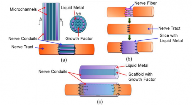 Liquid metal nerves