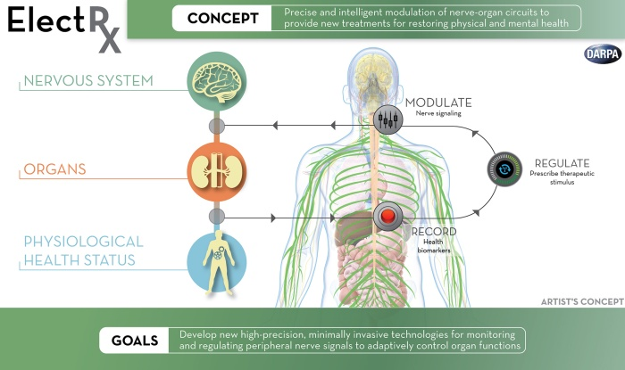 electrx-darpa-implant-diagram