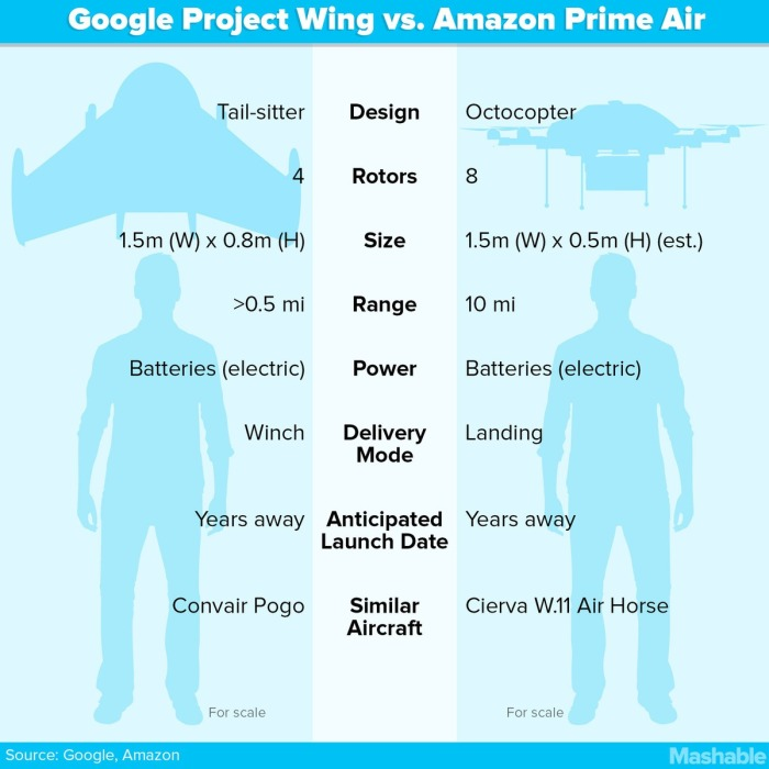 Google-Wing-3